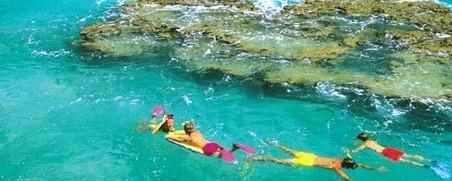 divers in bermuda
