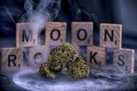 Moonrocks in Amsterdam