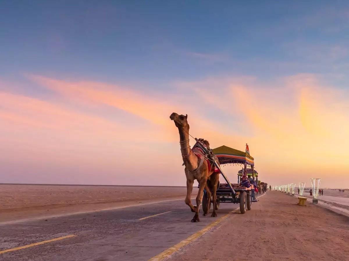 Rann Utsav A White Desert Festival - 2021-22