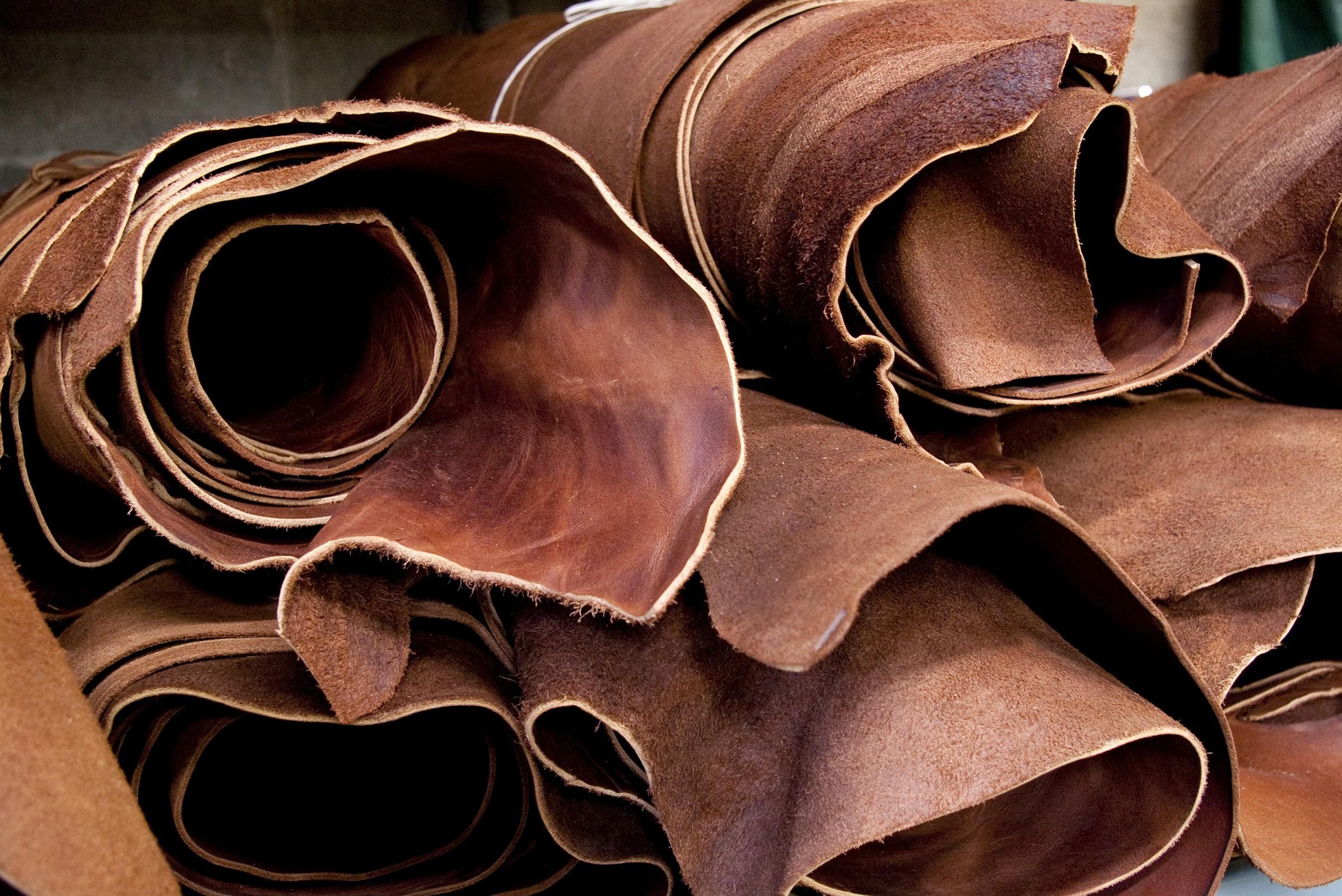 Leather Import Shipment Data