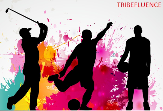 TribeFluence App - Sports Bloggers