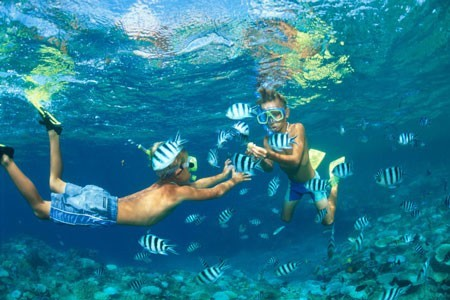 Andaman Tour And Travel