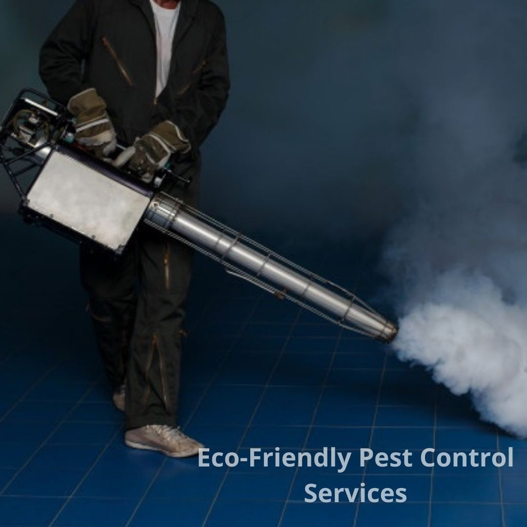Eco-Friendly Pest Control Services in Gosnells