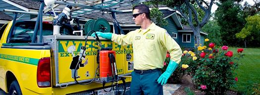 Pest Control Riverside CA