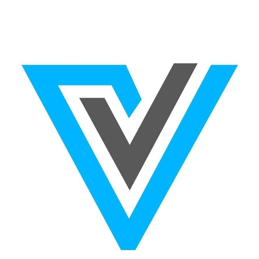 Vasundhara Infotech Logo