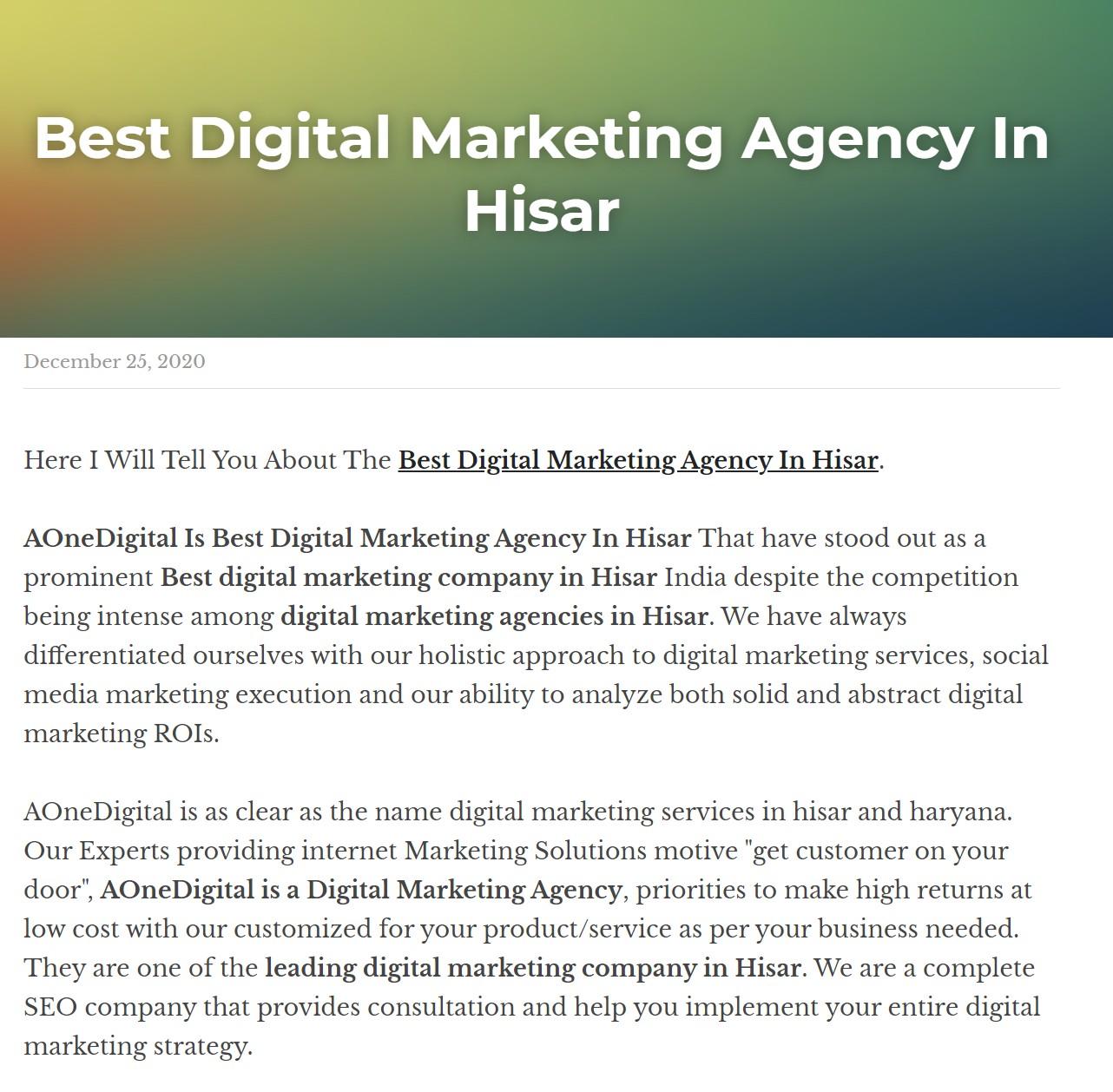 Best Digital Marketing Agency In Hisar