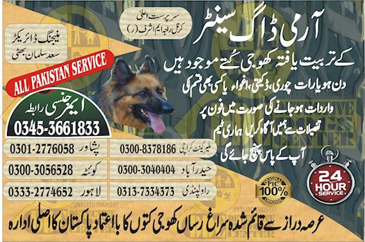 Army Dog Center