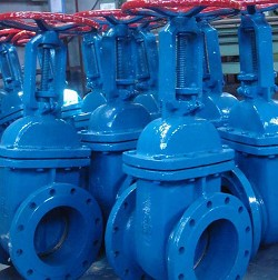 Gate Valve Manufacturer in Italy
