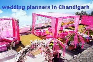 Wedding Planners In Chandigarh At Shaadigrand