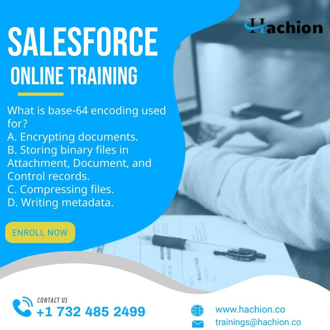 Salesforce Online Training-hachion
