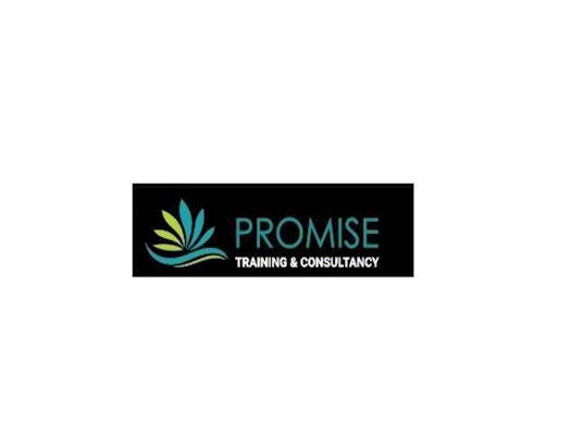 Promise Training & Consultancy