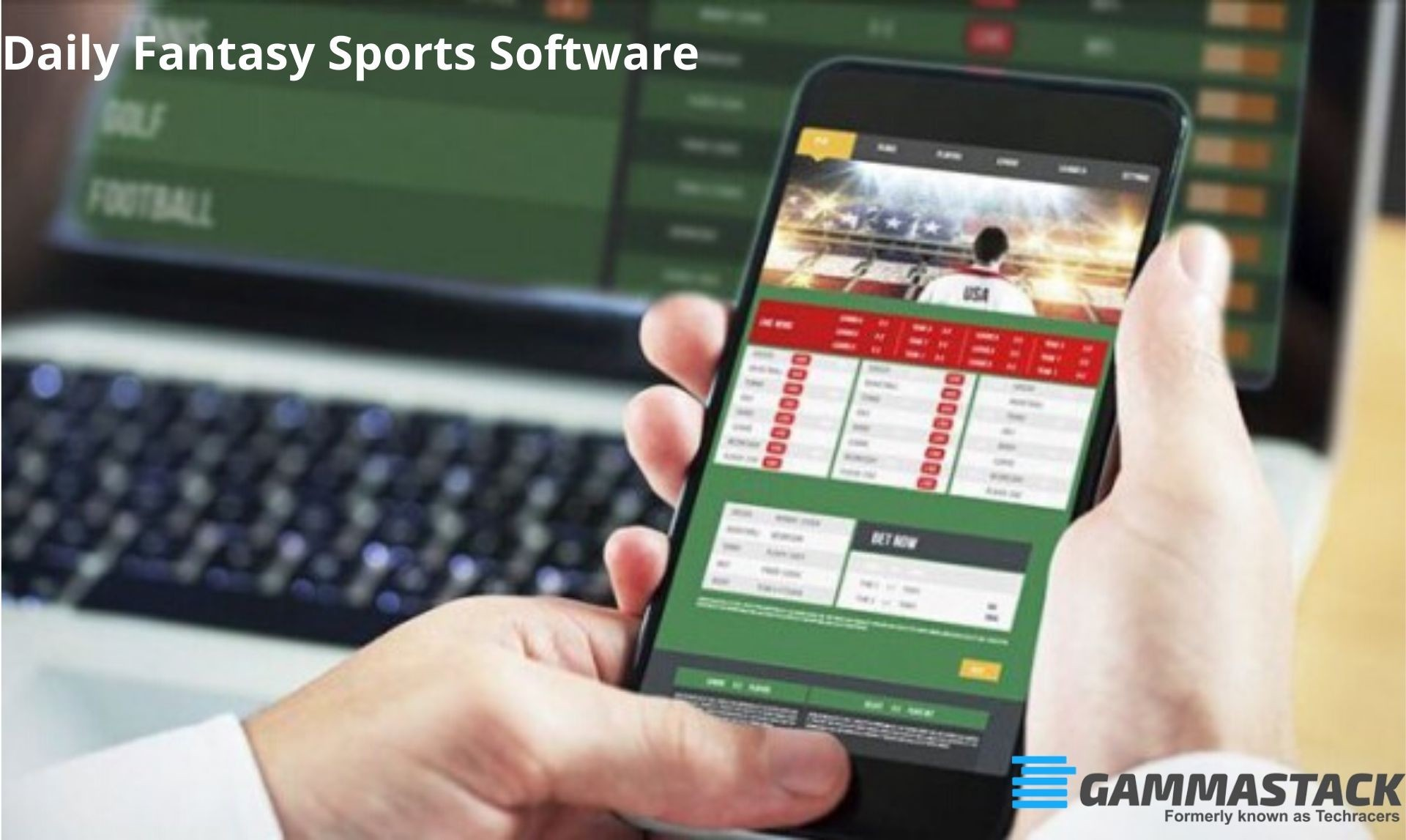 Daily Fantasy Sports Software