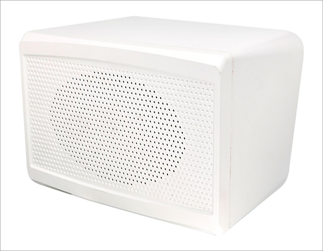 Wall Mounted Speaker System