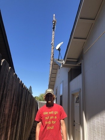 Lone Oak Tree Service