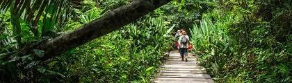 tambopata national reserve tours
