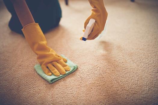 Custom Cleans Carpet