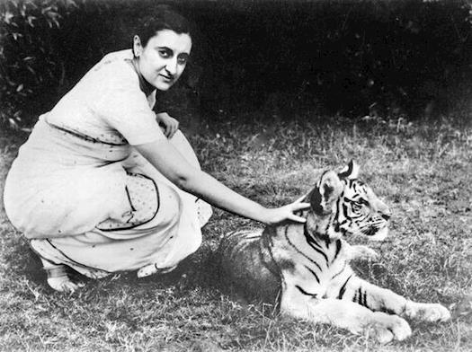 Environmental Program by Indira Gandhi