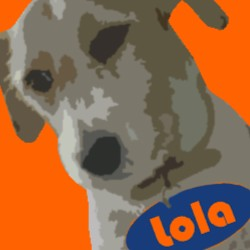 Mad Dog Lola Logo