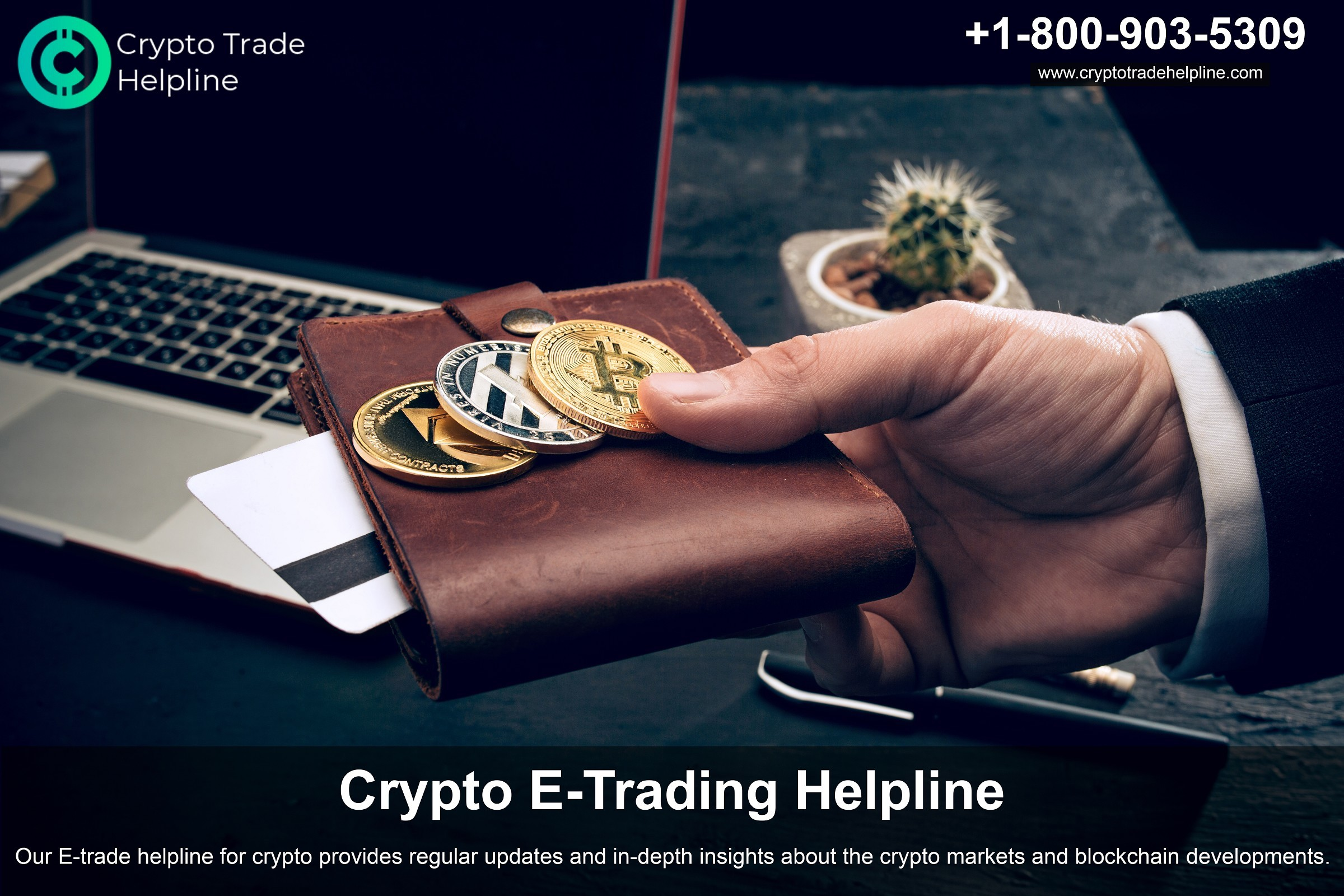 Cryptocurrency Brokers for Investment, Crypto Trading Experts