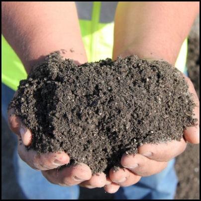 Garden Soil Plus