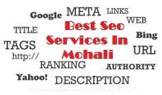 Best SEO Services in Mohali At Webczarsolutions