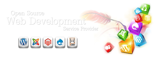 Website Development & Designing Services