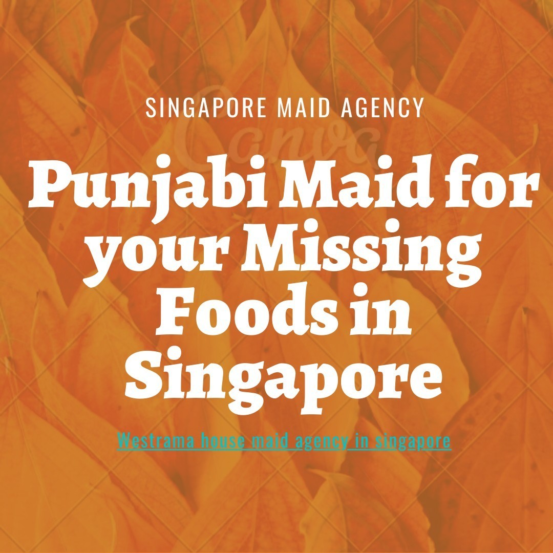 Best punjabi maid agency in singapore