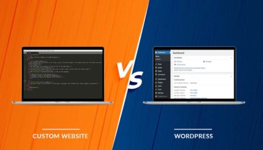Custom web development vs Wordpress