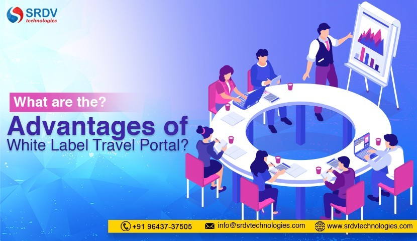 What are the Advantages of White Label Travel Portal?