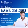 Hire Laravel Developers | Hire Laravel Coder- HID