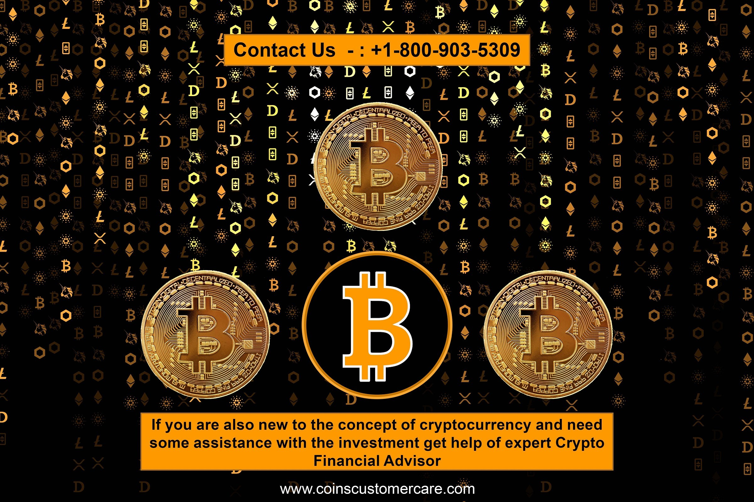 Cryptocurrency Financial Expert, Bitcoin Customer Services