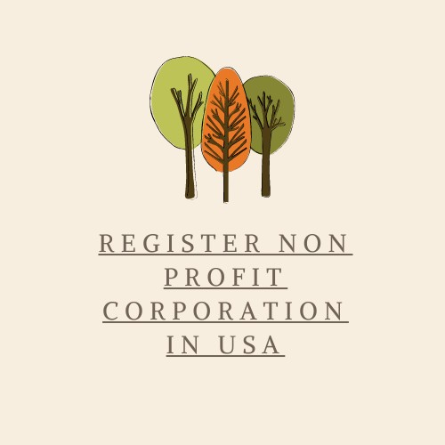 Non-profit Corporation USA