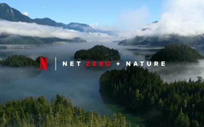 Companies that are aligned to climate change- Netflix