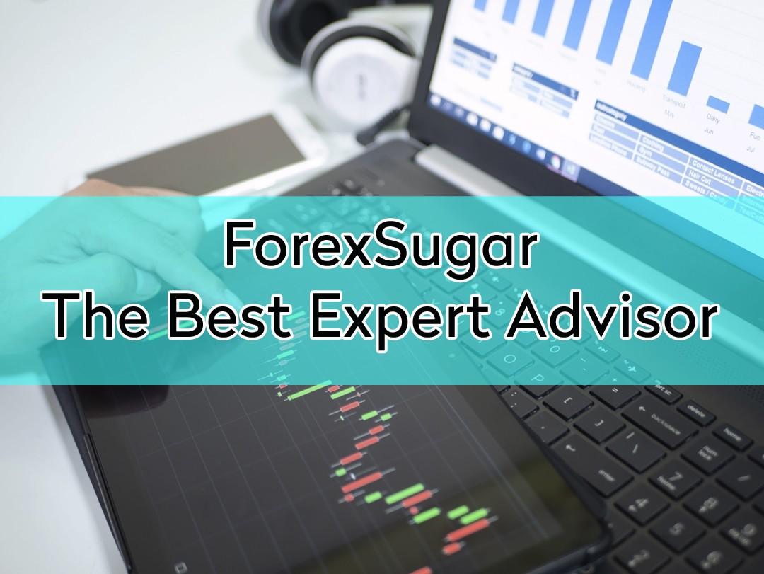 Best forex Expert Advisor