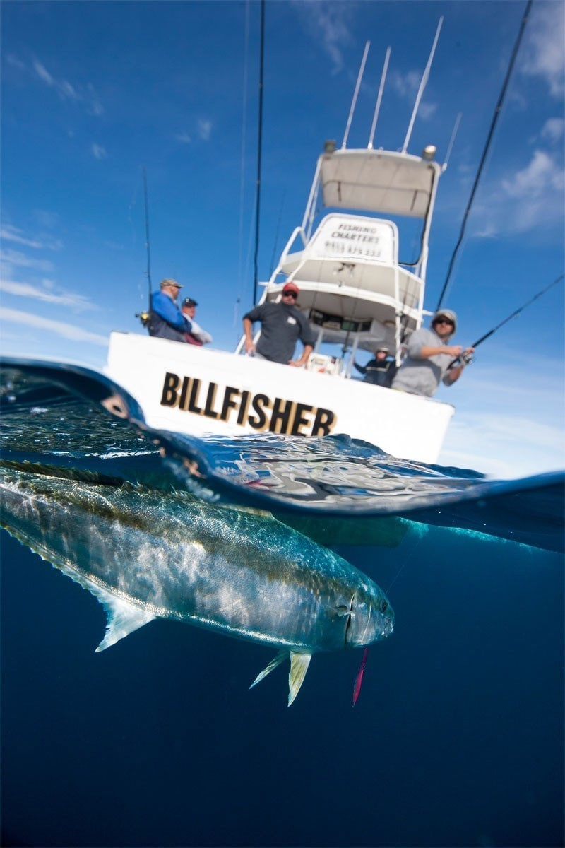 Fishing Charters Airlie Beach