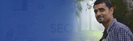 Hire an expert SEO consultant to promote your business website