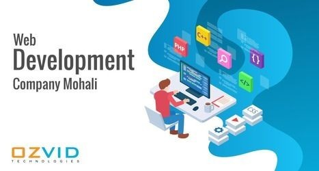 Best Web Development Company | OZVID