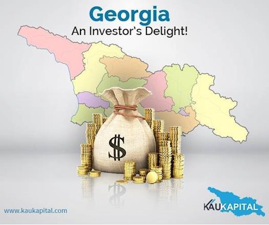 Investor's deliight