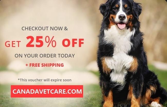 Buy Online Pet Supplies - Summer Super Sale