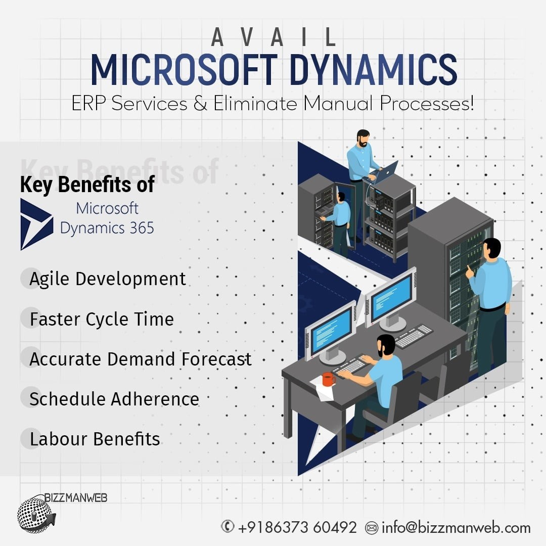 Microsoft Dynamics ERP Services