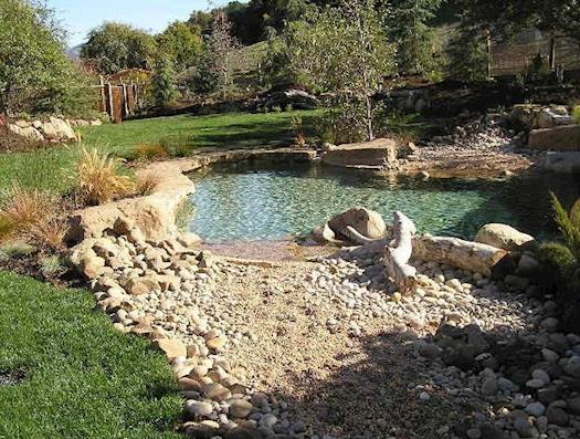 Pool and Garden Design
