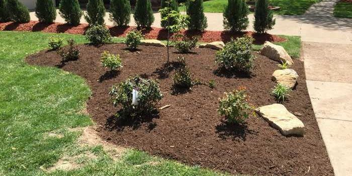 Get a Detailed Idea on What to Look in a Commercial Landscaping Company