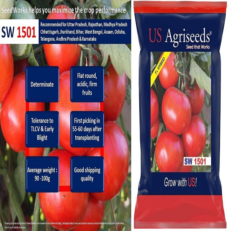 Vegetable Seeds Manufacturers in India