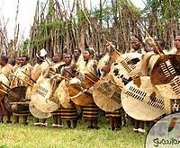 Swazi Warriors