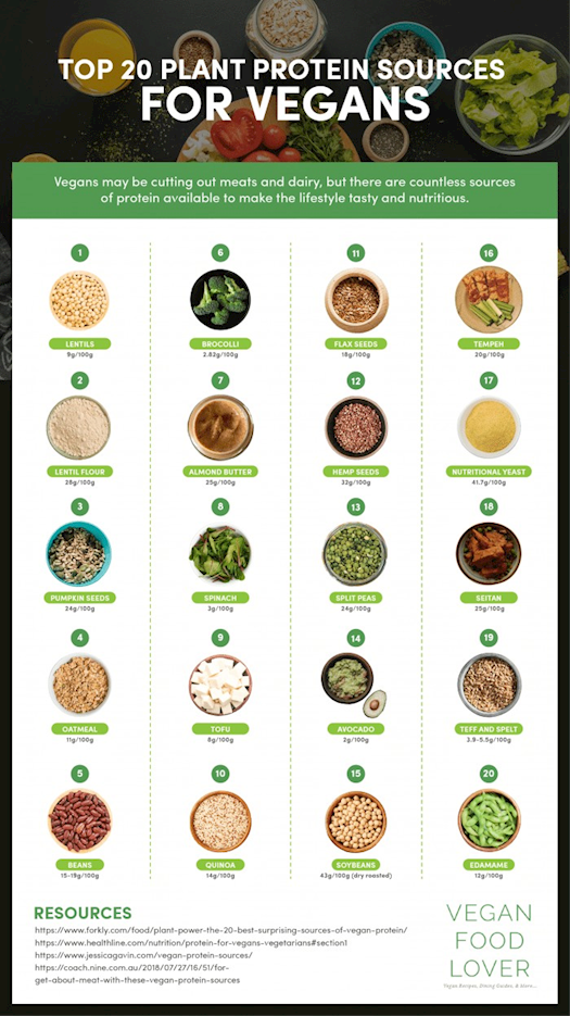 Top 20 Plant Protein Sources for Vegans
