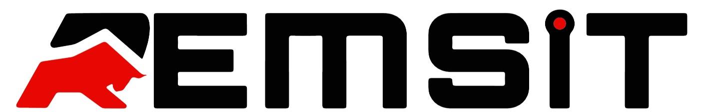 Logo Remsit