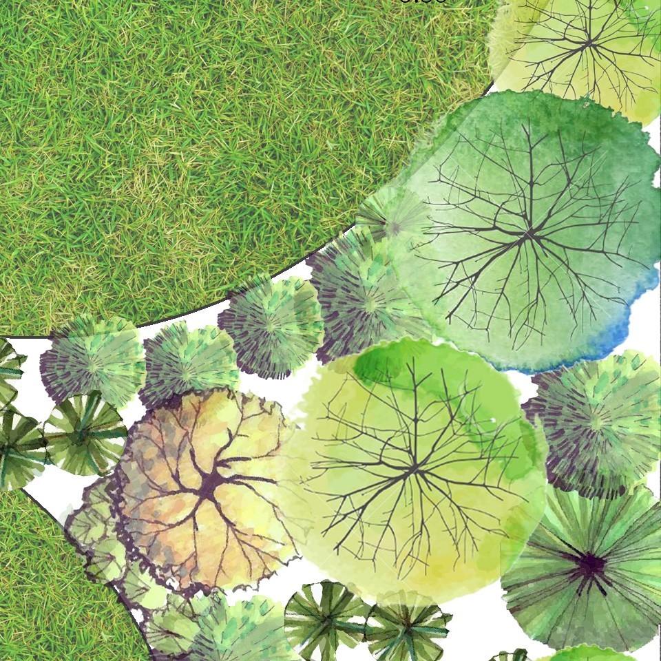Landscape Supplies Auckland
