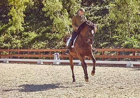 Los Angeles FEI Dressage Trainer