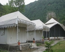 resorts in palampur   Hotels in palampur