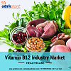 Global Vitamin B12 Industry Market Size and Forecast to 2022